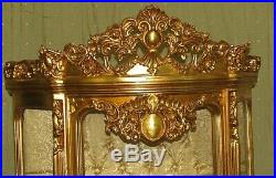 Case Baroque Style Gold Glass Case #as38