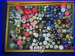 Vintage 300 Buttons on Pins Collection Arranged in Wood and Glass Display Case